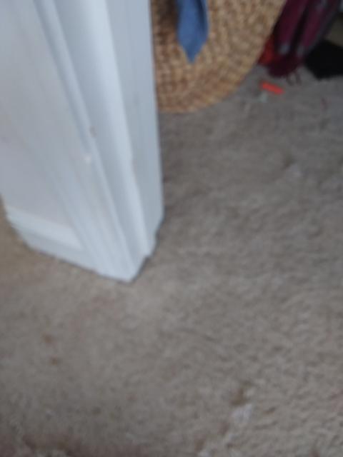 Able Carpet Repair of Jacksonville Beach, FL